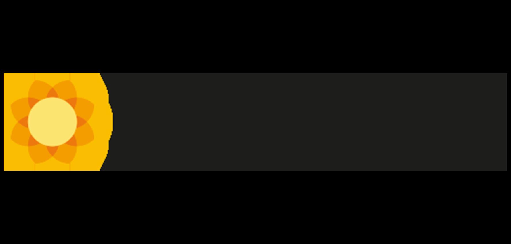 birminghamchildrenstrust